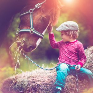 Little boy with a horse in summer